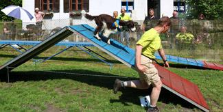 Tag-des-Hundes-(44)